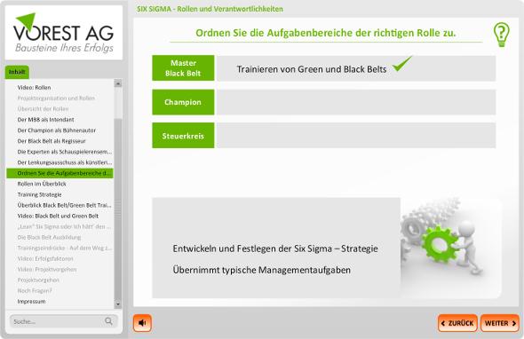 SIX_SIGMA_Rollen_Verantwortlichkeiten_Lernerfolgskontrolle_590px